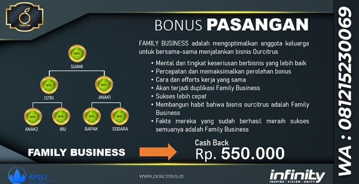 Pendapatan Bonus MLM